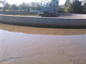 Der Schlamm sinkt langsam zum Boden des Beckens und wird abgesaugt.