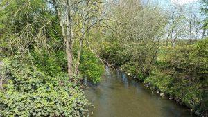 Das saubere Wasser wird über den Abfluss wieder in den Bach geleitet.